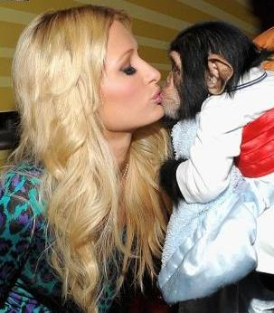 Paris Hilton embrasse un chimpanzé !