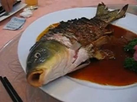 Ils mangent un poisson encore vivant (VIDEO)