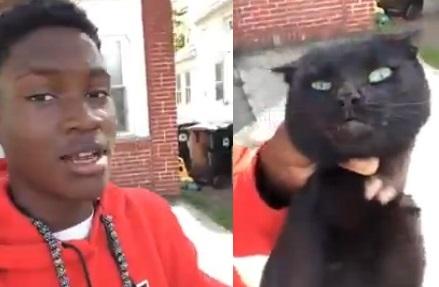 Choc : il maltraite un chat qui a mangé les croquettes de son chien (vidéo)