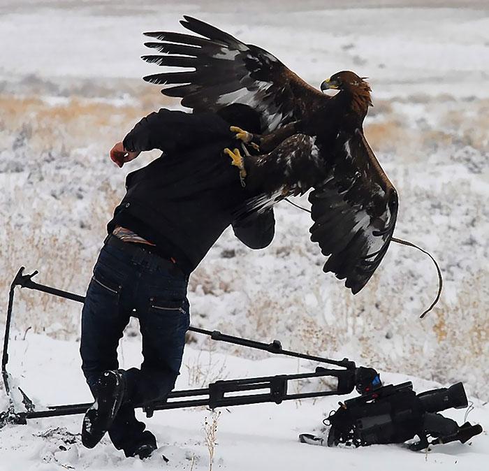 Photographe danger (5)