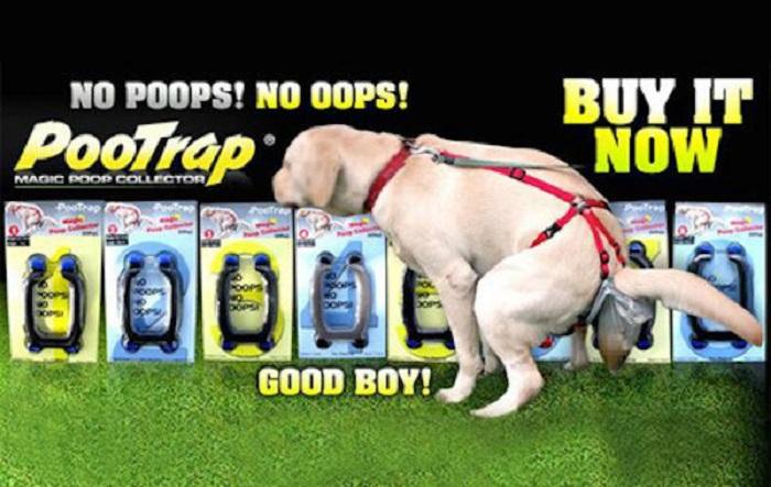 Sachet crotte de chien