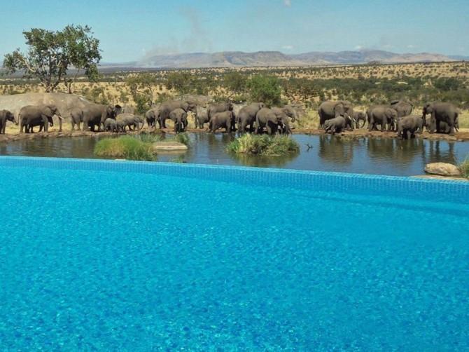 8. Tanzania's Four Seasons Safari Lodge Serengeti