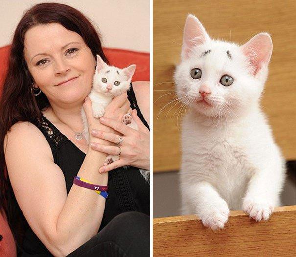 Gary Concerned Kitten (11)