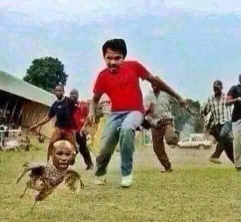 Mayweather VS Pacquiao Fight 4