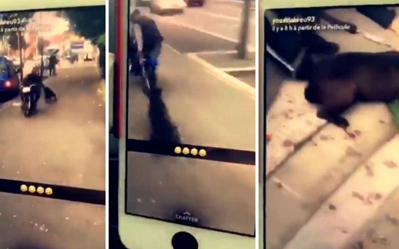 Un mec de banlieue traîne un chien vivant derrière son scooter (vidéo)